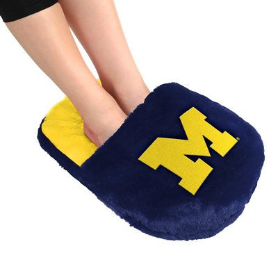 Michigan Wolverines Official NCAA Team Logo Plush Feetoes
