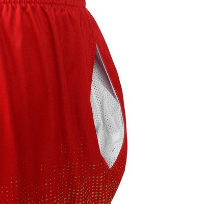San Francisco 49ers Official NFL Gradient Polyester Shorts