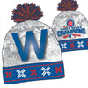 Chicago Cubs 2016 World Series Champions Accessories - Choose You Style