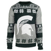 Michigan State Official Men's NCAA Big Logo Sweater by Klew