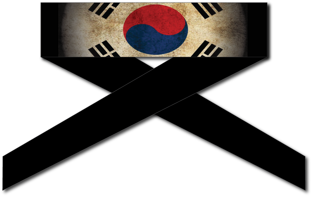 Korea Flag Series Headband