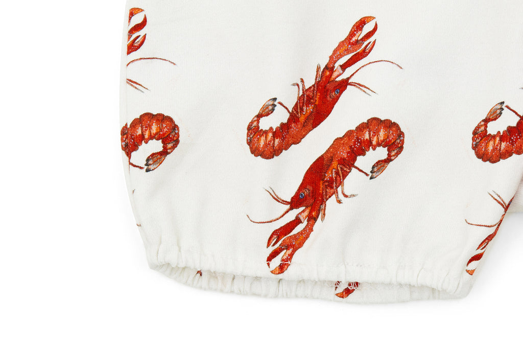 Vild Lab No.8 - Rare Living Lobsters, Organic Cotton Bloomers