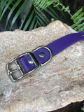 Dog Leash Standard Handle