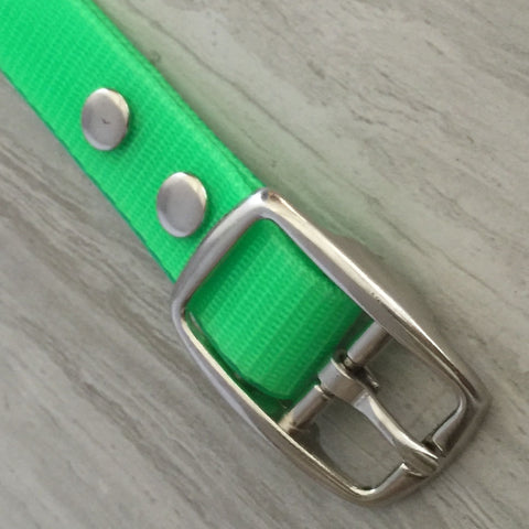 The Classic Dog Collar Glossy Finish
