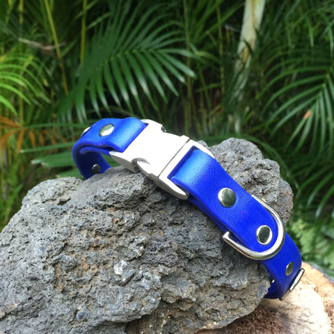 Matte bright blue collar