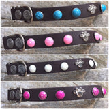 Anniversary Edition Custom Side Release Dog Collar Matte Finish