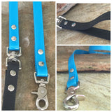 Glossy bright turquoise leash