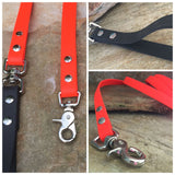 Matte bright orange dual handle leash