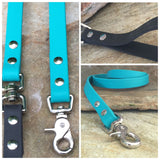 Matte bright teal dual handle leash