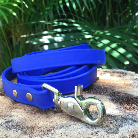 Glossy bright blue leash