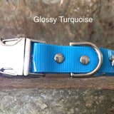 Glossy turquoise collar