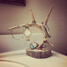 Antler Jewelry Holder - Whitetail
