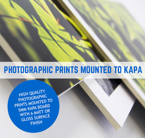 KAPA FOAM BOARD PRINT AND MOUNTED
