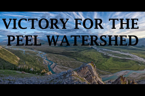 Good News For The Peel Watershed!