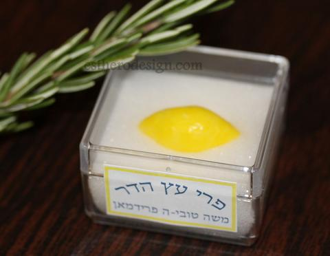Etrog Box Party Favor