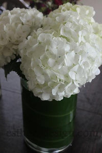 How to Keep Hydrangeas Fresh