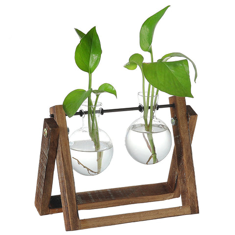 Clear Glass Planter Bulb Vases
