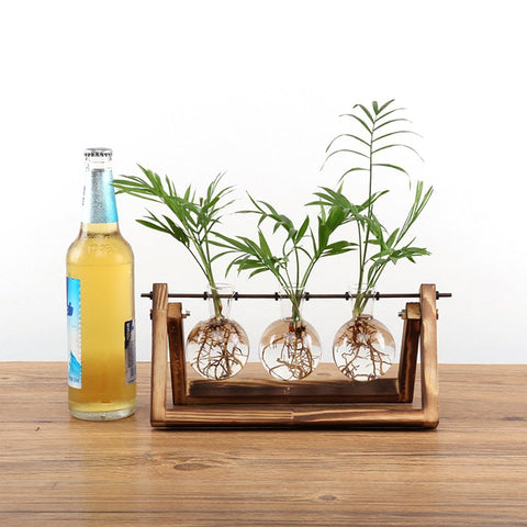 Desktop Glass Planter Bulb Vase
