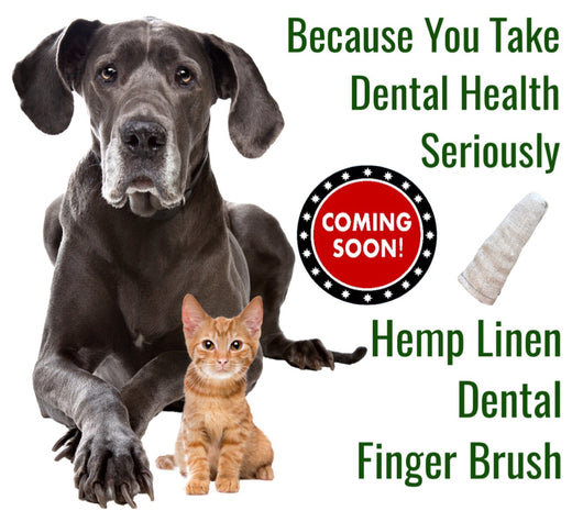 A dog and cat promoting a hemp linen dental finger brush