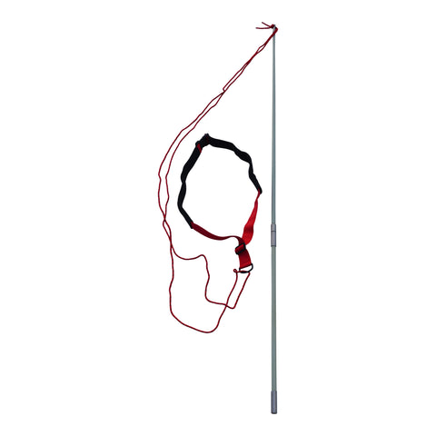 Resistance Tether Pole for Swim Spas