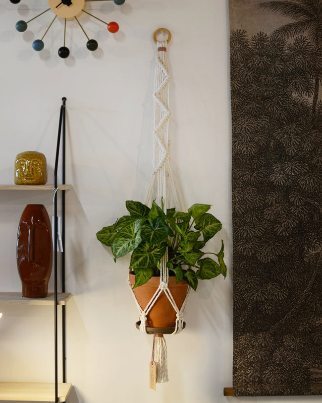 Macrame Wall Plant Hanger Neutral On Wooden Ring