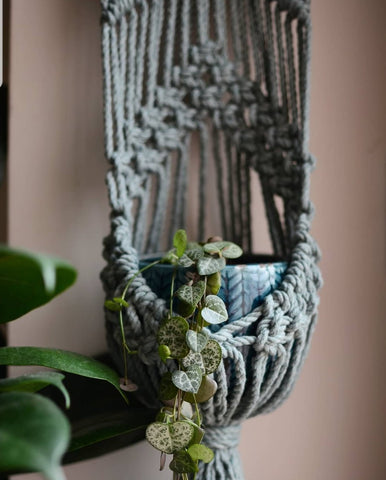 Macrame Wall Plant Hanger Avocado/Neutral