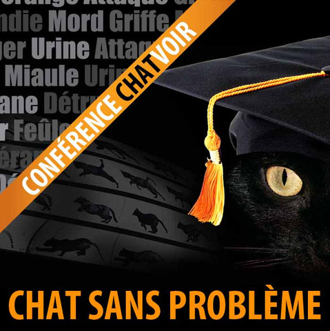 9 mai 2020 / Conférence web Chatvoir (au Québec) - Cat learning web conference (in Quebec)