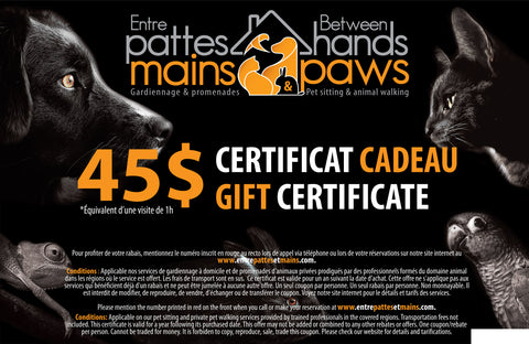 Entre pattes et mains - Certificat cadeau de 45 $ (taxes incluses) / Gift Certificate $45 (taxes included)