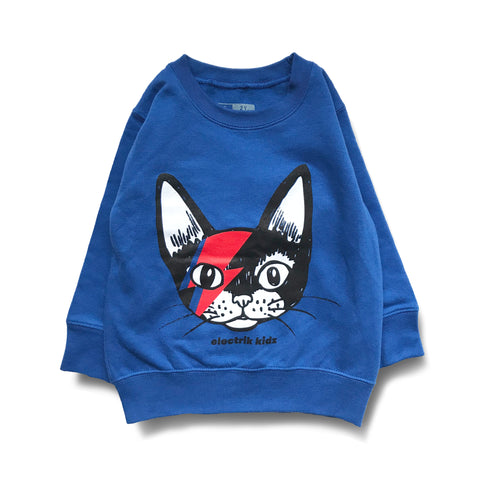 Sweater -CAT ODDITY