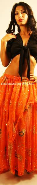 Bollywood Skirt/Veil Set Costume