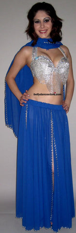 Blue Sequin Skirt/Veil Set
