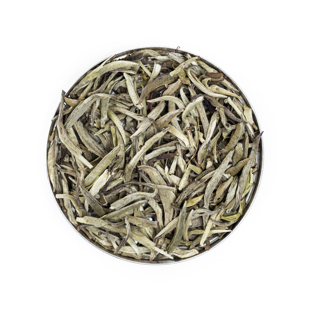 Silver Needle White Tea - Clari•Tea House