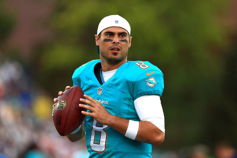 matt moore nfl playoffs