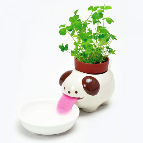 peropon self-watering planter 'dog' clover