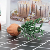 miniature plant 'leafy in terracotta pot'