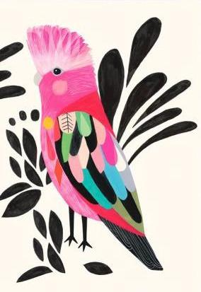 earth greetings card 'galah'