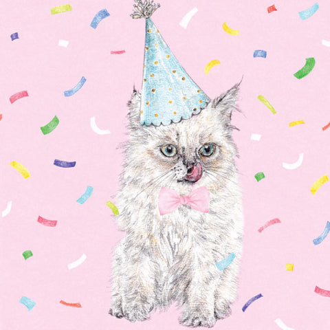 la la land greeting card 'birthday kitty'