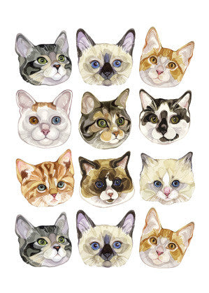 AHD 'CATS' GREETING CARD