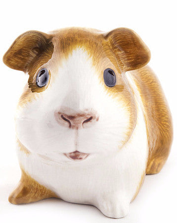 QUAIL MONEY BOX 'DUTCH GUINEA PIG'