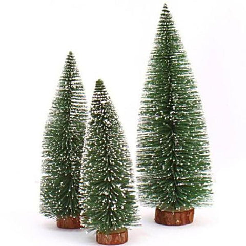 miniature 'white cedar tree' extra large 30cm
