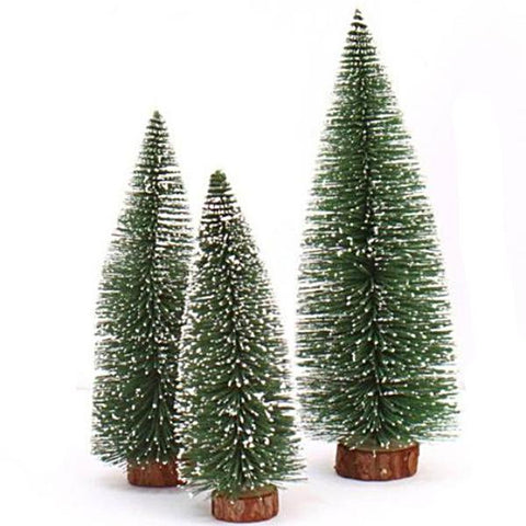 miniature 'white cedar tree' extra small 10cm
