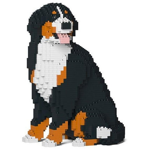 jekca kit 'bernese mountain dog'