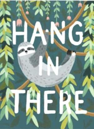 idlewild co. greeting card 'hang in there'