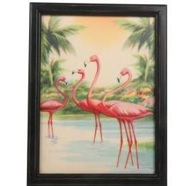 temerity jones framed print 'flamingo'