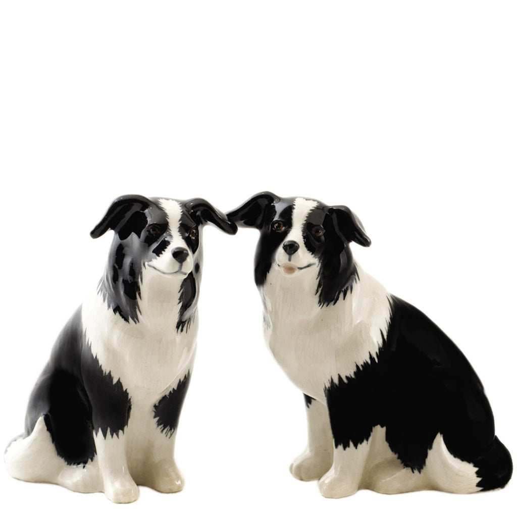 quail ceramics salt & pepper 'border collie'