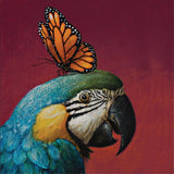 la la land greeting card 'blue parrot & butterfly'