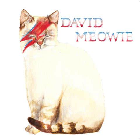 la la land greeting card 'david meowie'