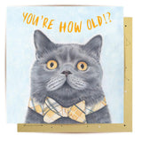 la la land mini card 'birthday cat'