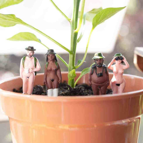 gift republic 'plant pot naked ramblers'