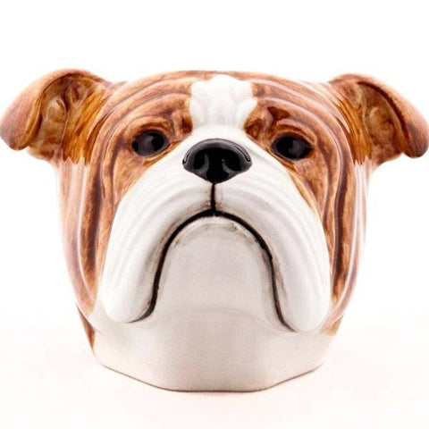 quail ceramics face egg cup 'english bulldog'